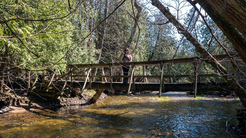 Bridges over the Boyne River