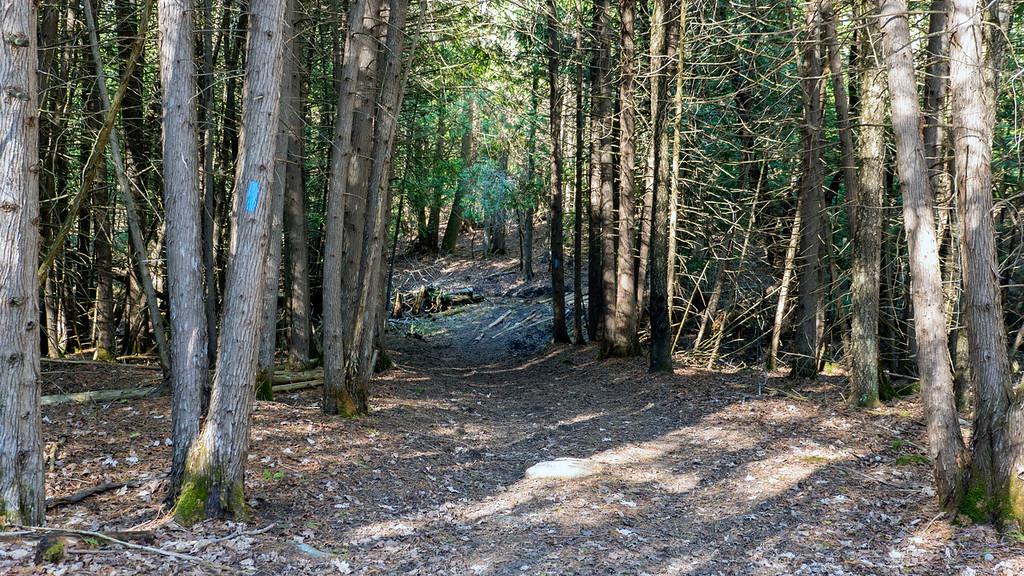 Boyne Valley Side Trail