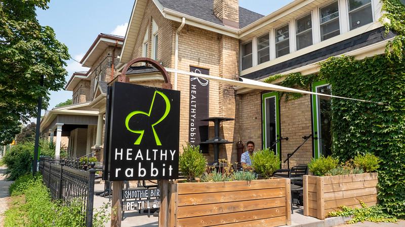 Healthy Rabbit Brantford