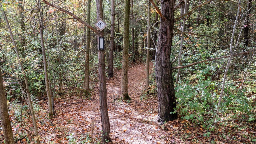 The Bruce Trail Caledon