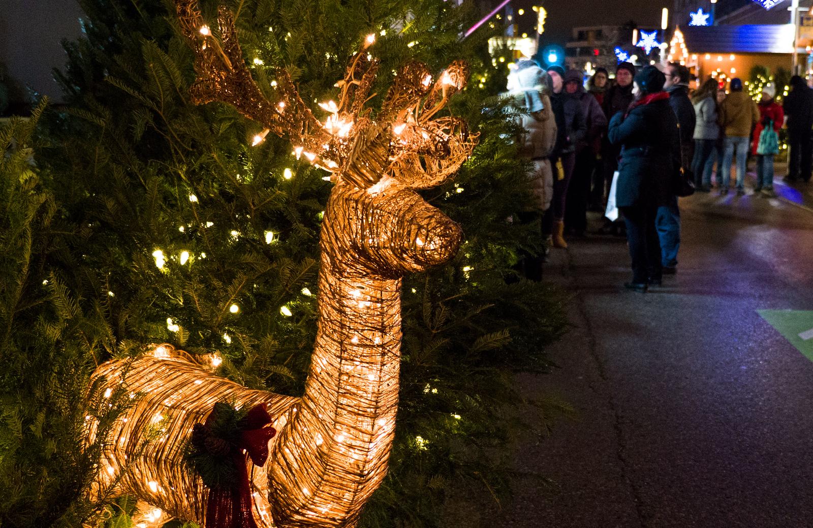 5 German Christmas Markets in Canada You Must Visit - Christkindl Market, Kitchener