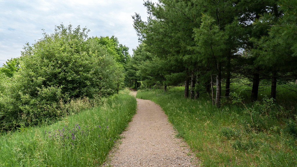 Claireville Conservation Area - hiking trails