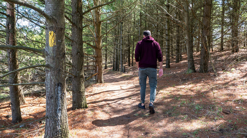 Hiking at Cold Creek Conservation Area - Ontario Hiking Trails