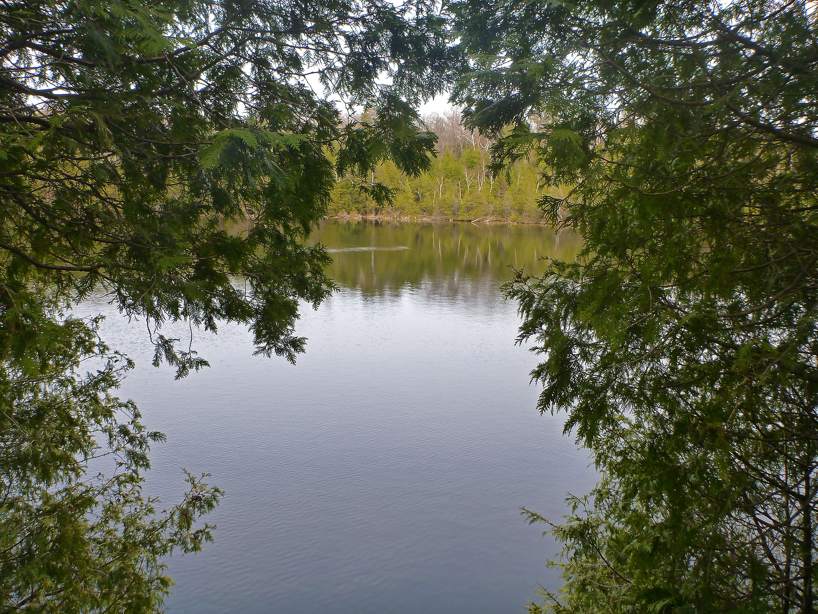 Hiking Around Crawford Lake in Milton, Ontario, Canada