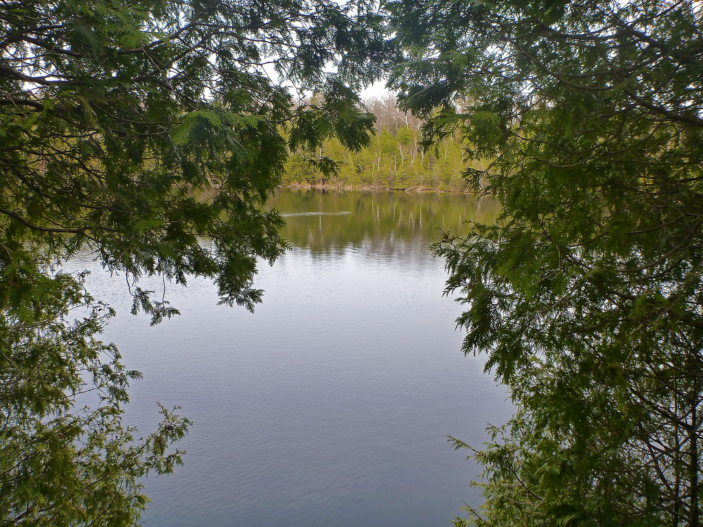 Crawford Lake Conservation Area - a rare meromictic lake