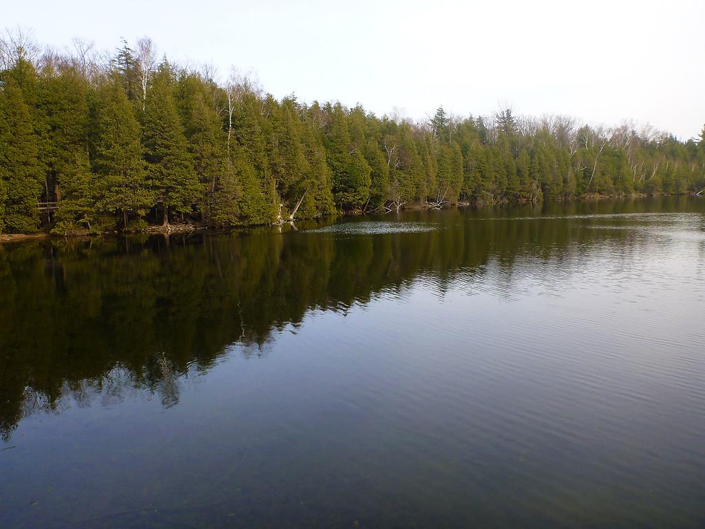 A rare Meromictic Lake in Ontario, Canada