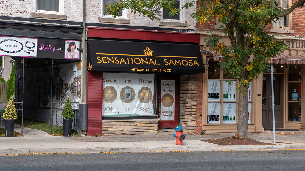 Sensational Samosa