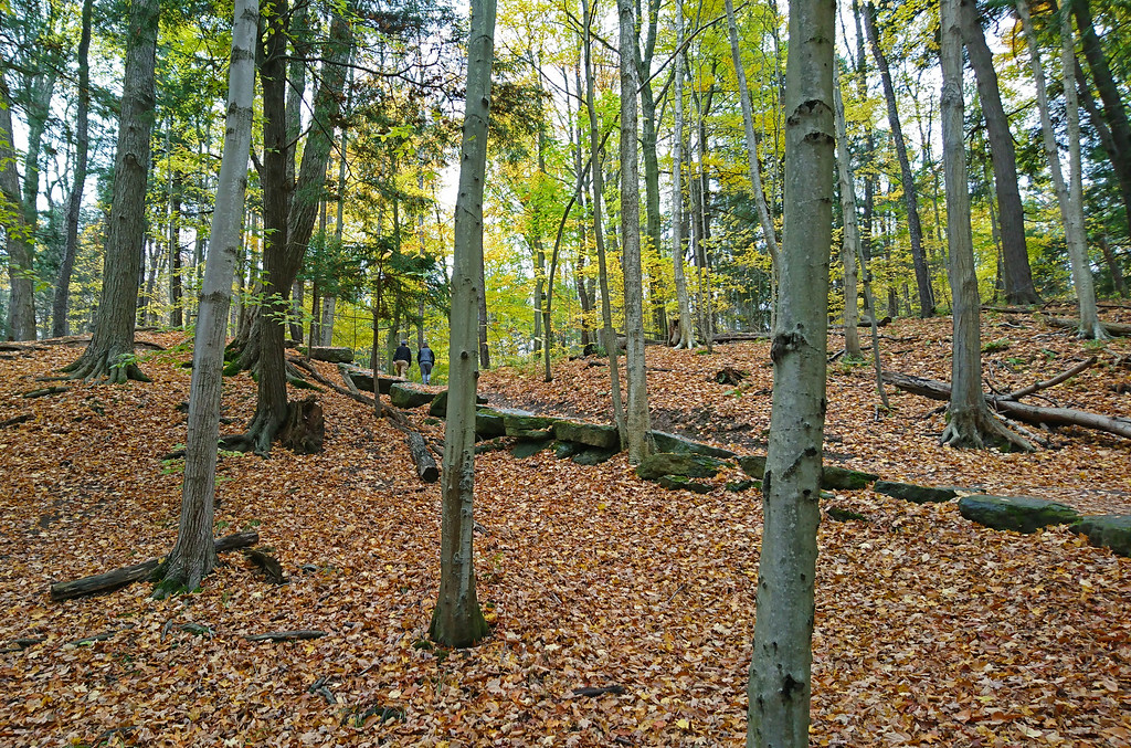 Dundas Valley Hiking Trails