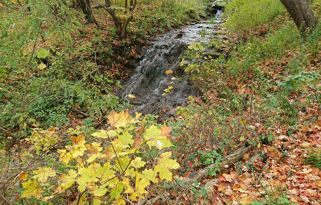 Hermitage Cascade - Dundas Valley Conservation Area