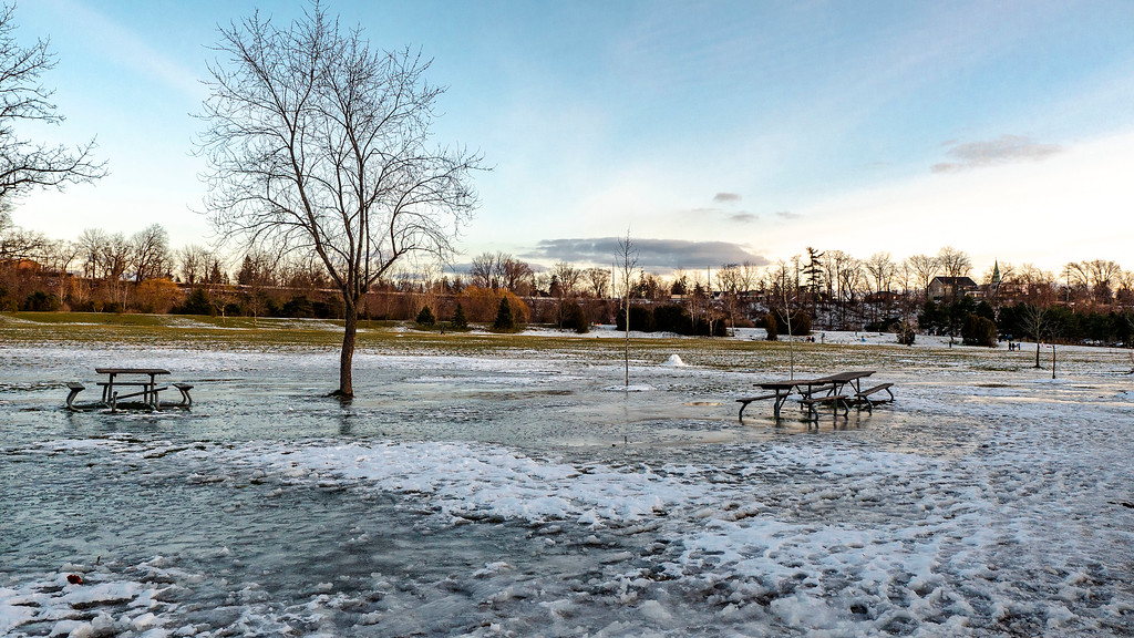 Erindale Park in winter
