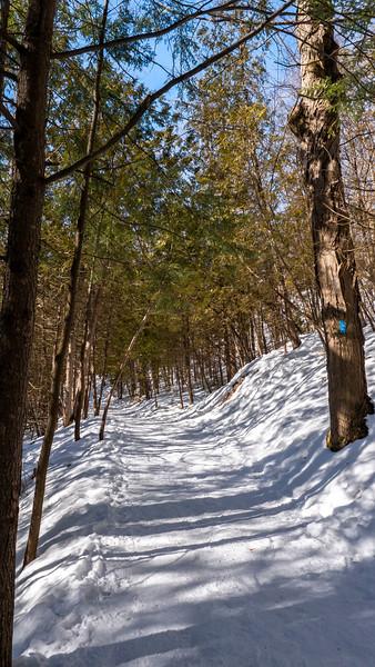 Bruce Trail / Dominion Trail hiking