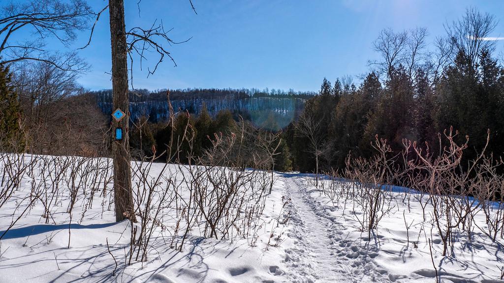 Bruce Trail Side Trail