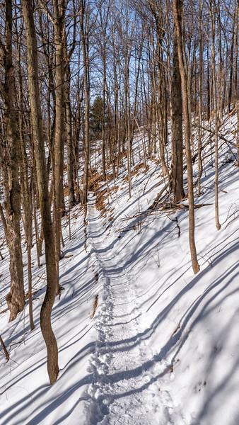 Bruce Trail Caledon