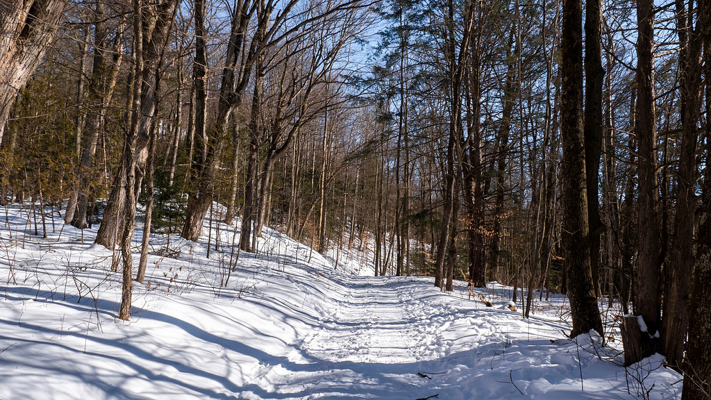 Bruce Trail at Forks of the Credit Provincial Park