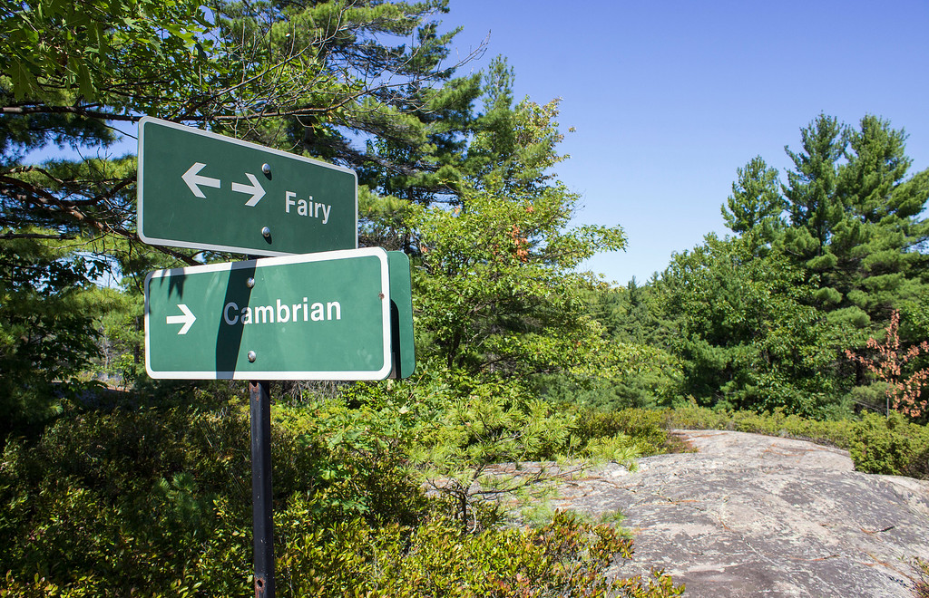 Fairy and Cambrian Trails