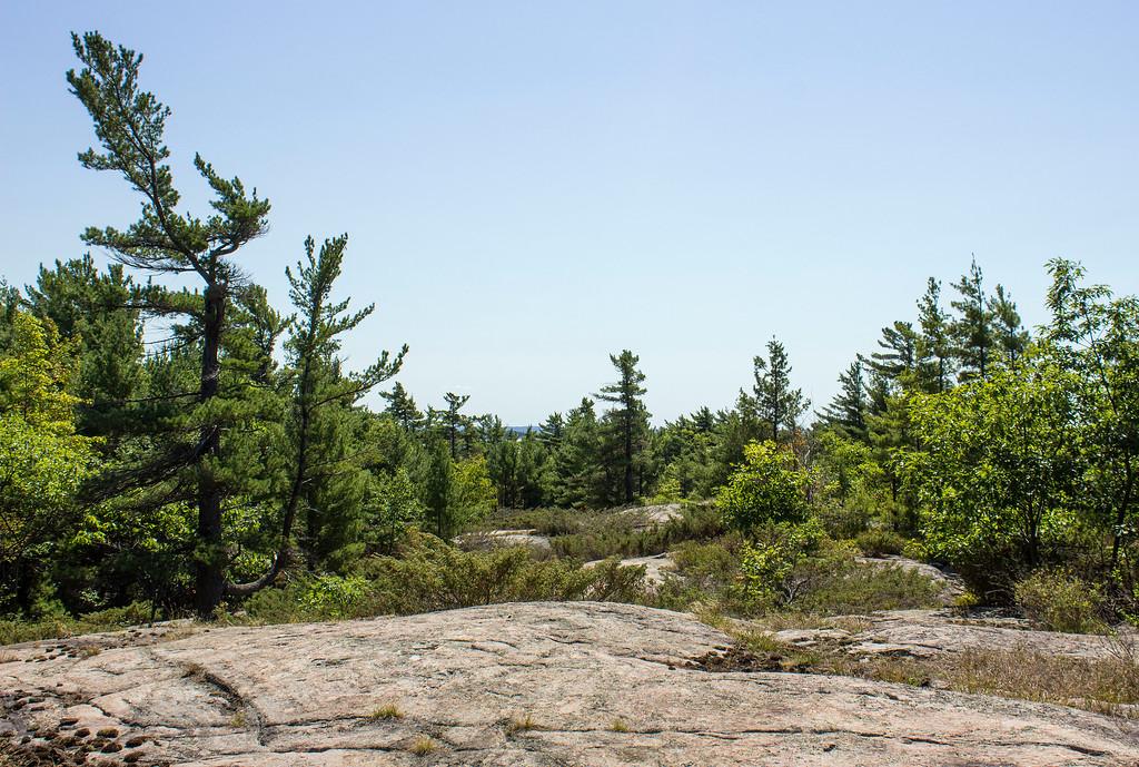 Hiking at Beausoleil Island - Cambrian Trail