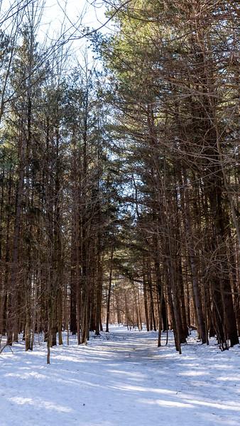 Trans Canada Trail / Great Trail