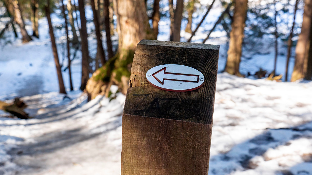 Arrows marking the Duffins Trail