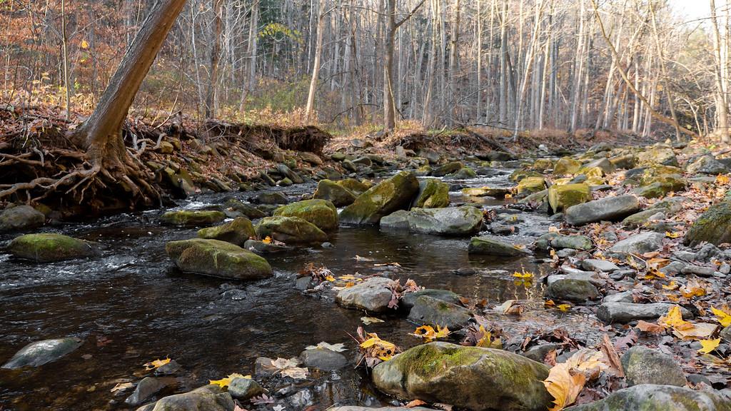 Grindstone Creek hike