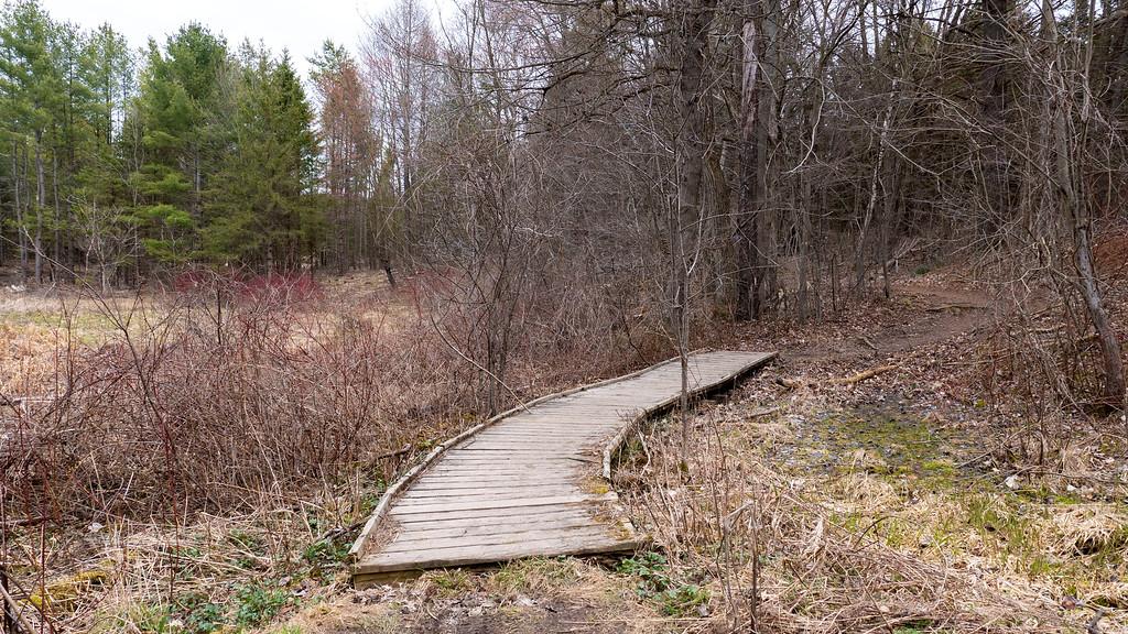 Little bridge on the Oak Ridges Trail