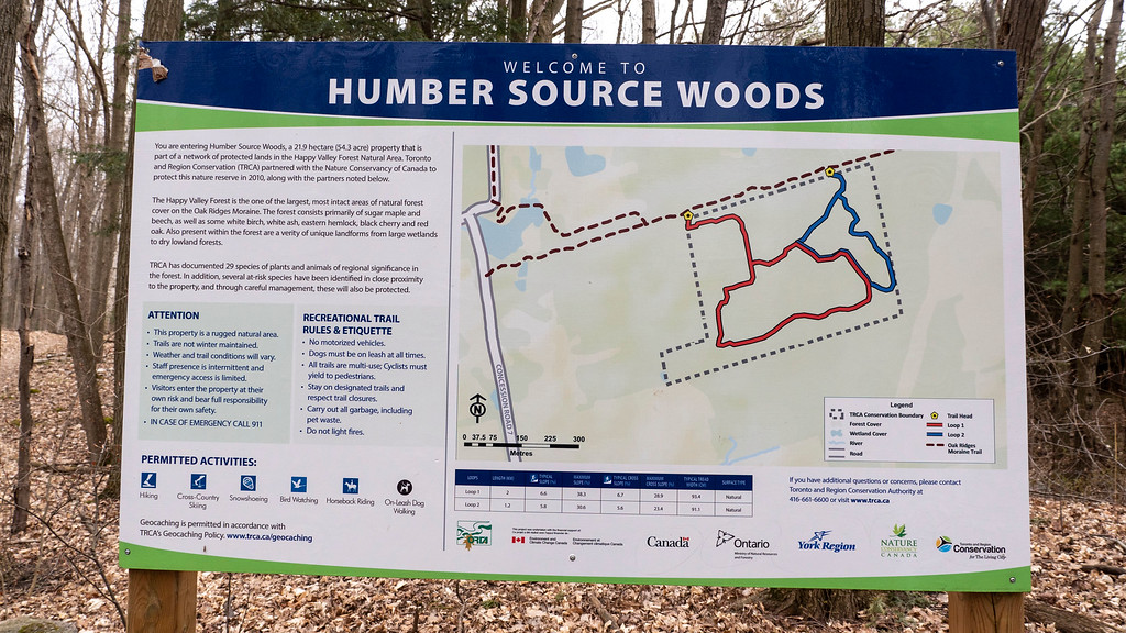 Humber Source Woods