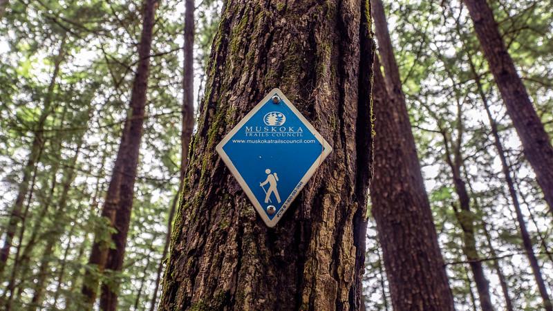 Muskoka Trails council marker