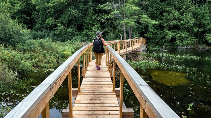 Boardwalk trails in Ontario