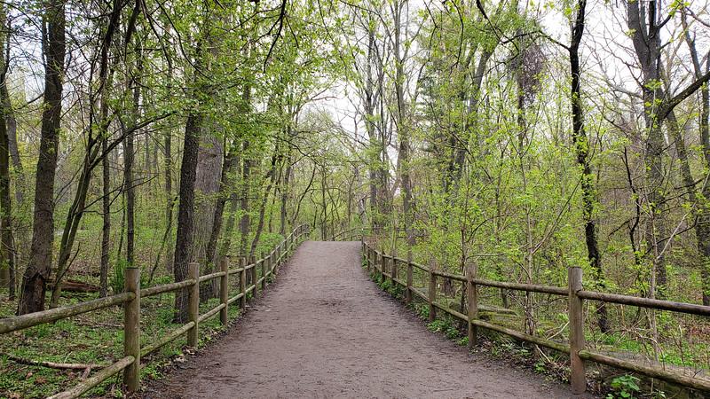 High Park Nature Trails