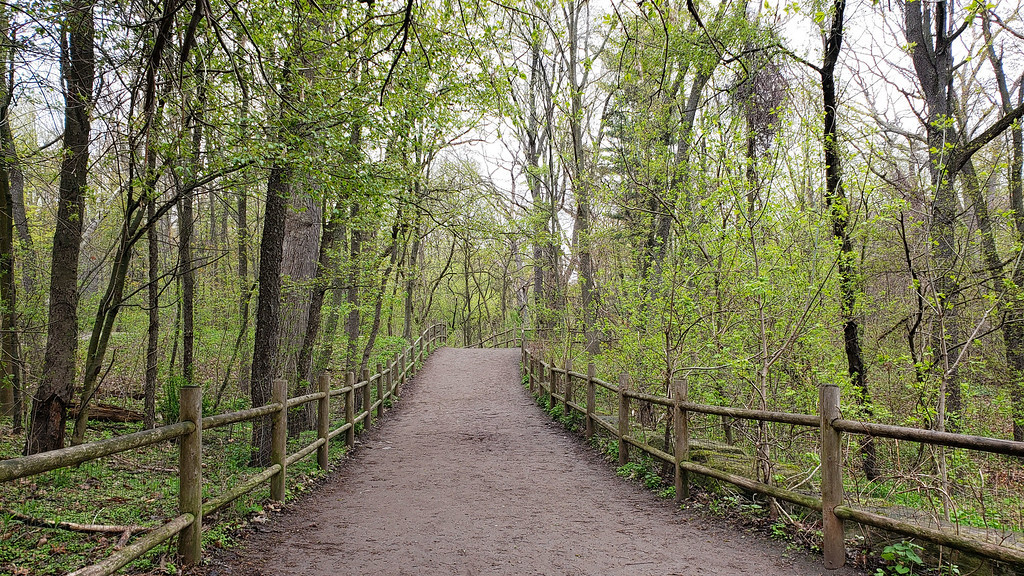 Sentier naturel de High Park