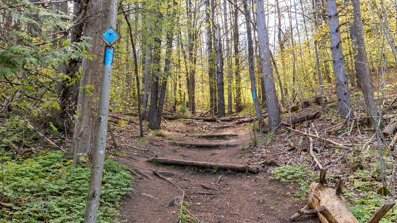 Glen Cross Side Trail
