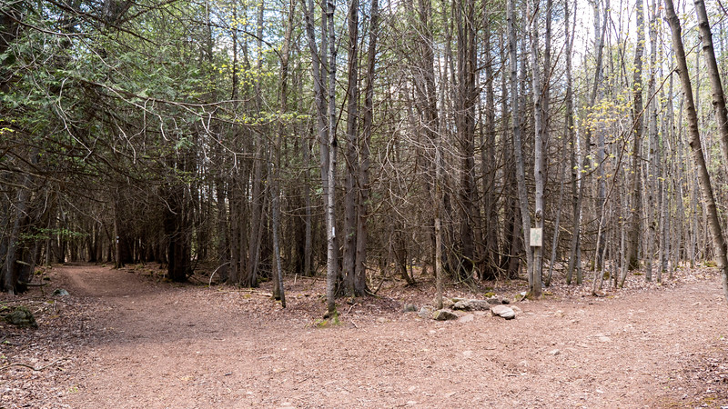 Bruce Trail - Hockley Valley