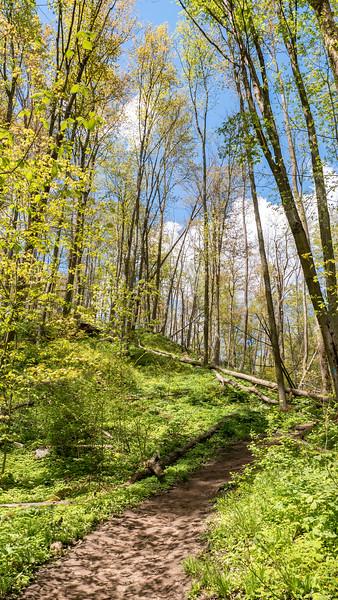 Tom East Side Trail