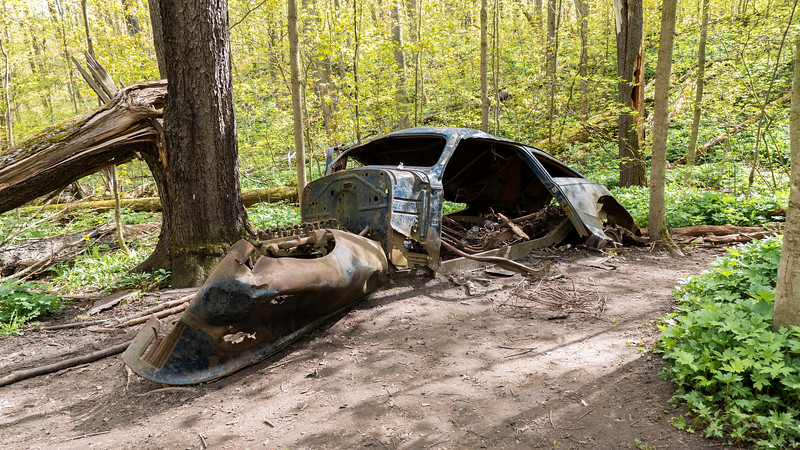 Old car remains at Hockley Valley