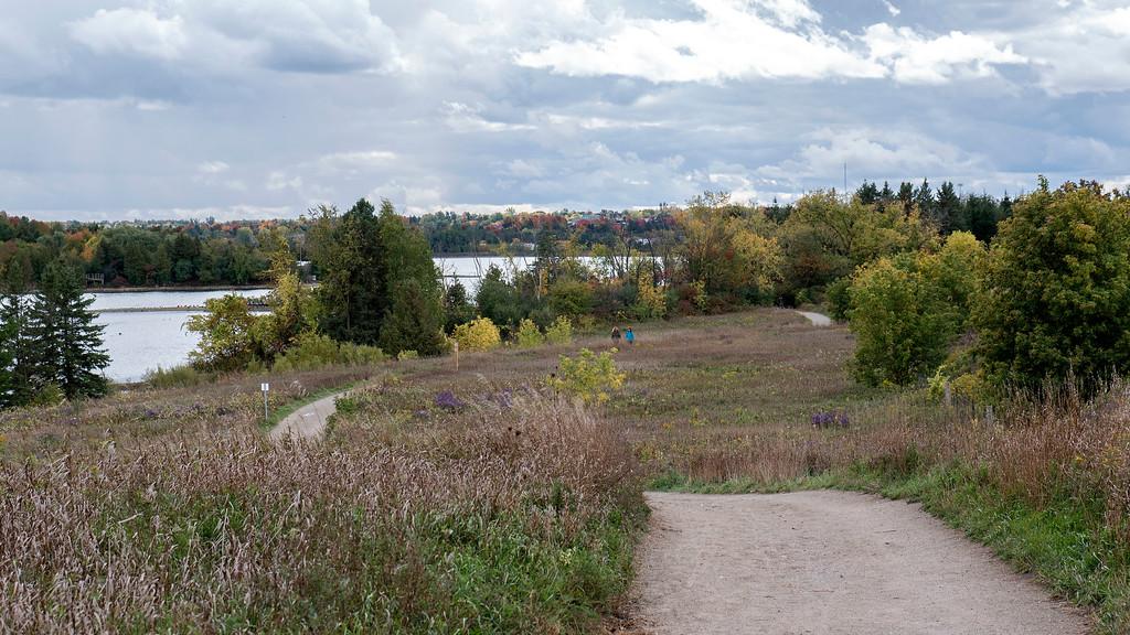 Meadows of the Vicki Barron Lakeside Trail