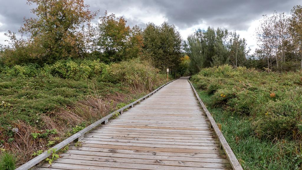 Boardwalk hiking trails in Orangeville Ontario