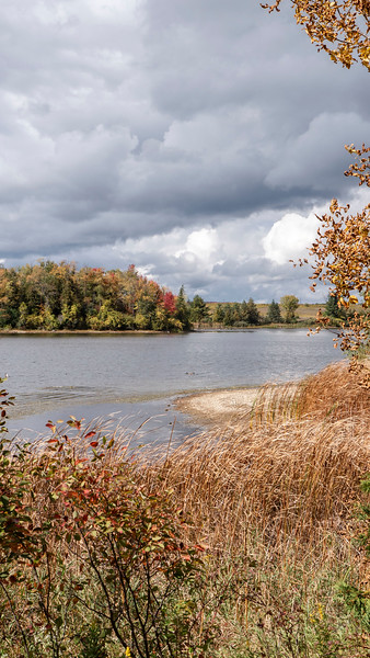 Island Lake Conservation Area hiking trails