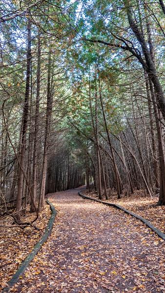 Vicki Barron Lakeside Trail Orangeville