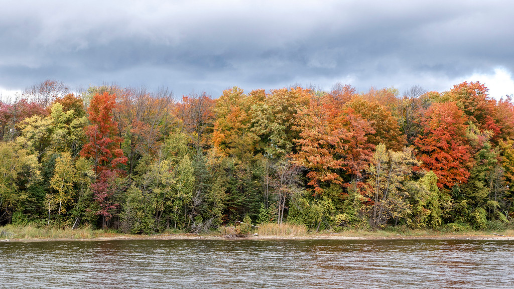 Fall colours at Island Lake Conservation Area