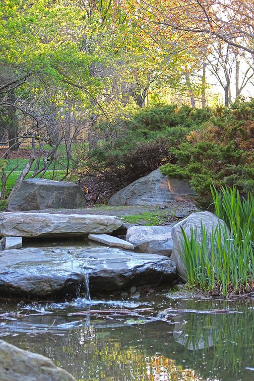 Japanese garden in Mississauga