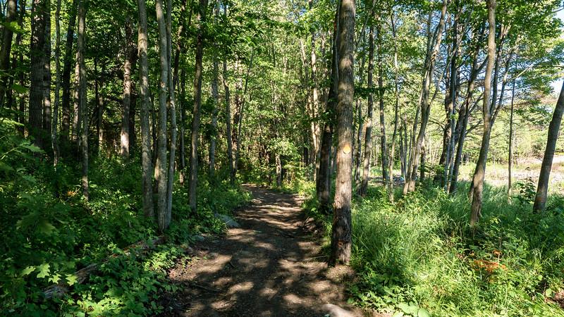 Hikes in Killarney Ontario