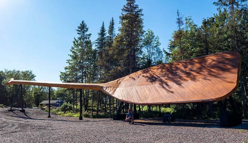 The World's Largest Paddle