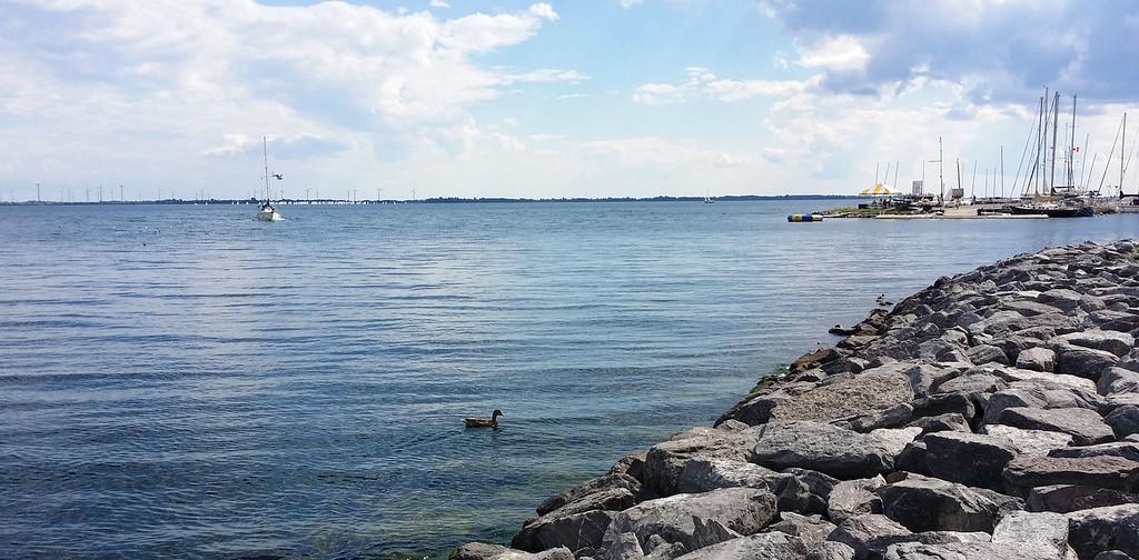 Le fleuve Saint-Laurent vu du centre-ville de Kingston Ontario