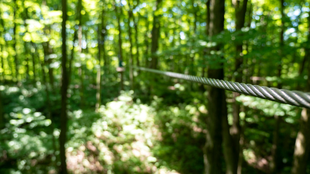 Outdoor activities in London Ontario: Treetop adventure park at Boler Mountain
