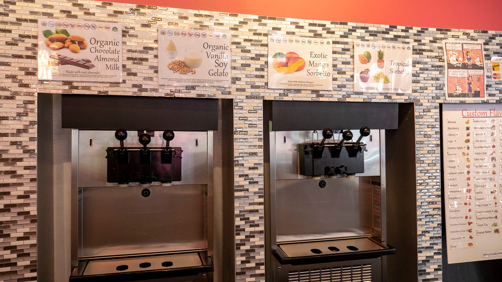 Vegan Restaurants in London Ontario: Chil Froyo