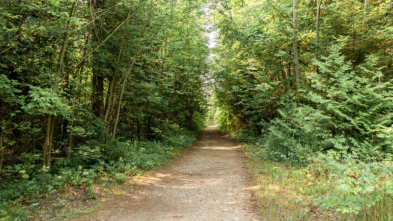 Old Shore Road Trail