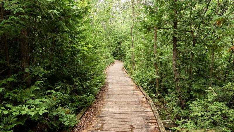 MacGregor Point Provincial Park boardwalk trail