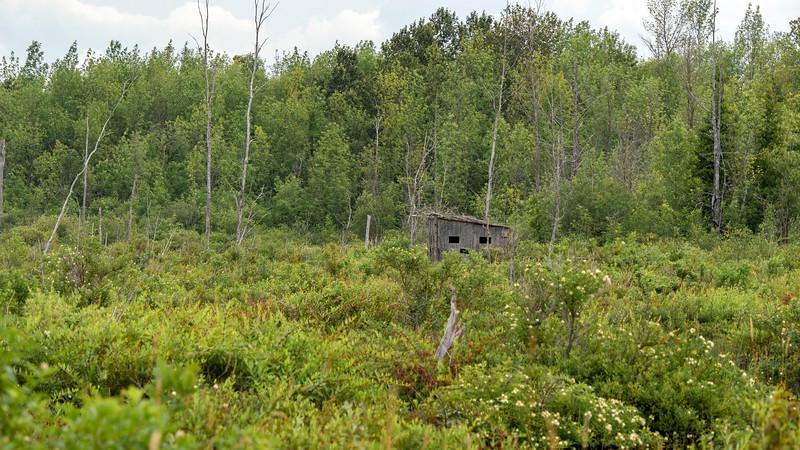Bird hide at MacGregor Point Provincial Park