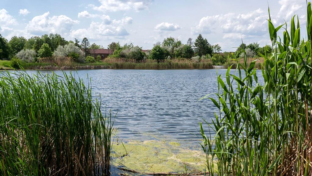 Mississauga hiking trails - Lake Aquitaine Trail