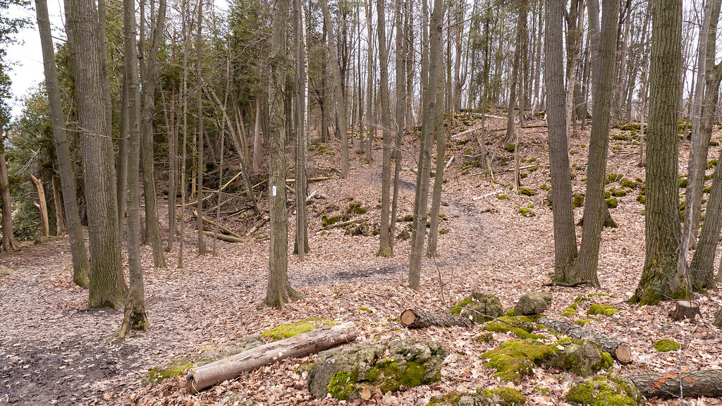 Hiking in Burlington Ontario - Halton hiking trails