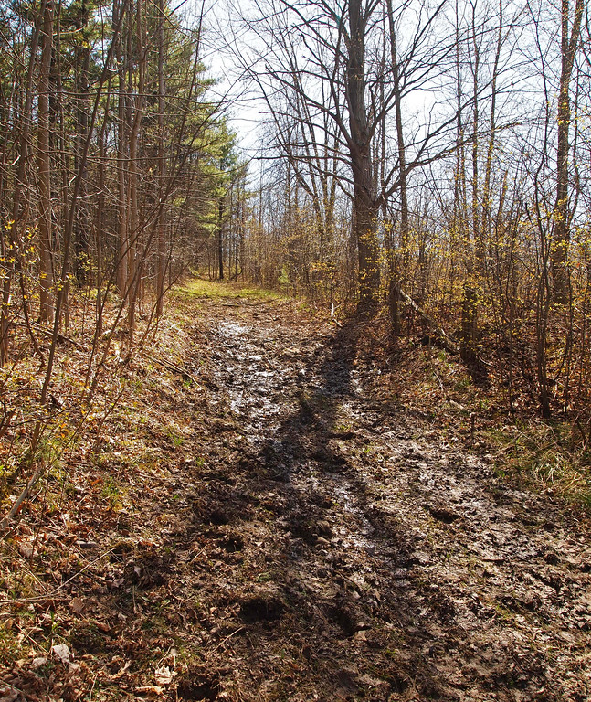 Mountsberg Conservation Area – Campbellville, ON